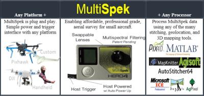 Multispek Prinzip