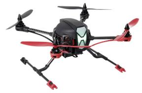 X350 kurze Landweine